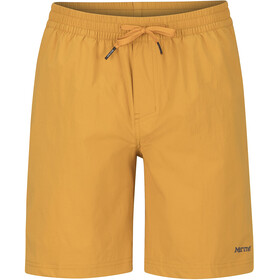 Marmot Allomare Shorts Men aztec gold
